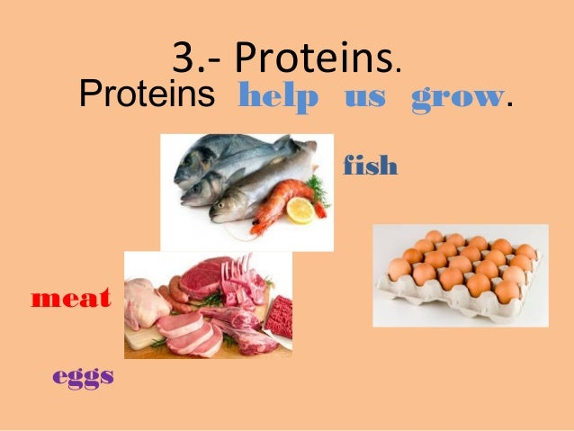 Proteins Help Us Grow Fish Meat Eggs 6