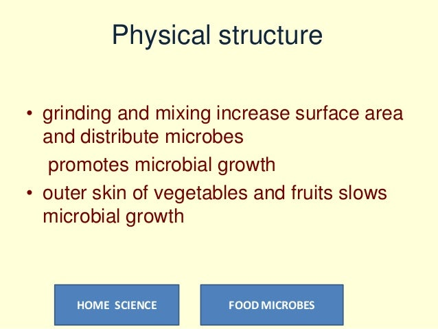 microbes in food production pdf
