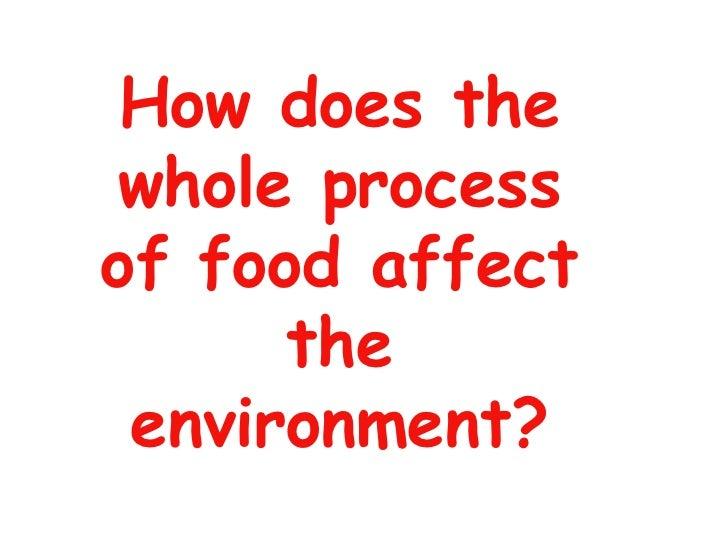 How does the whole process of food affect the environment?