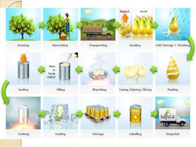 chemicals in food production and preservation Food processing mainly talks about how raw food could be changed into another form so that it would be edible at the same time it should be variative, mass-produceable, cost-efficient.
