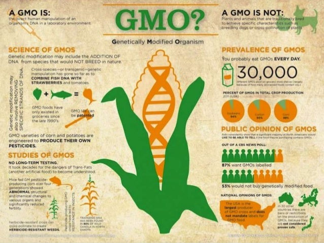0 10 20 30 40 50 60 70 80 Top 11 GM crops producing countries