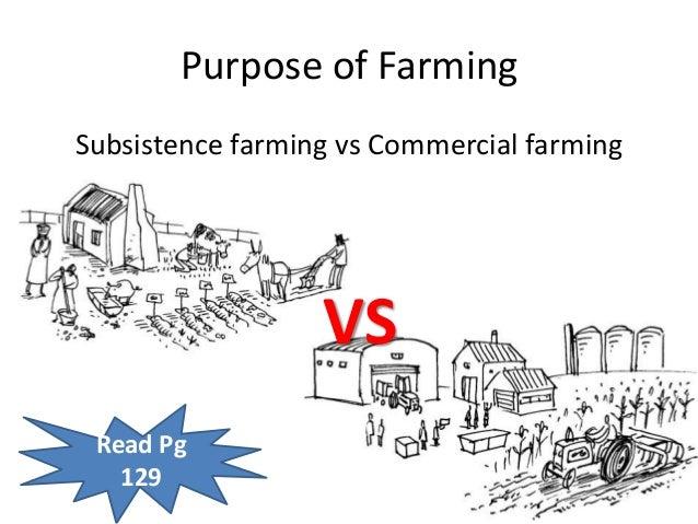 Perennial Farming Systems