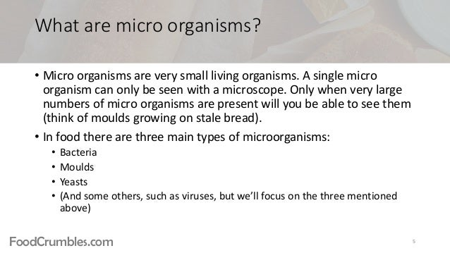 Food Science Basics 5 Food Microbiology