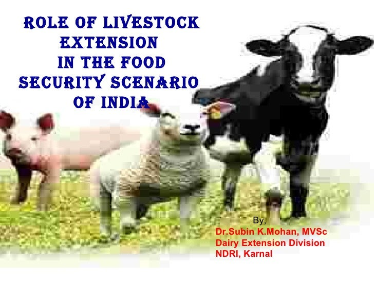 ROLE OF LIVESTOCK EXTENSION  IN THE FOOD SECURITY SCENARIO  OF INDIA By, Dr.Subin K.Mohan, MVSc Dairy Extension Division N...
