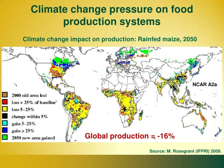 Global Food Security: New Trends and Emerging Agenda
