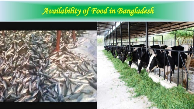 essay on food security in bangladesh Usda supports global food security through in supply of nutritious and safe food, establishing global food security is important not only bangladesh, haiti.