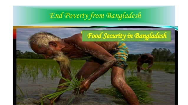 food security in bangladesh Food security in bangladesh increasing food and nutritional security for the resource poor farmers in jamalpur and faridpur districts duration: 25 may 2005 – 24 may 2009 supported by: european union (eu) status: completed on time practical action bangladesh has completed a foshol component.