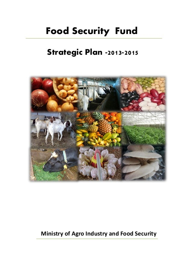 Food Security Fund  Strategic Plan -2013-2015Ministry of Agro Industry and Food Security