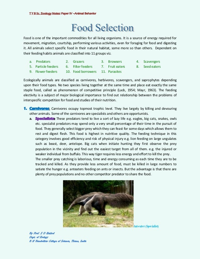 importance of animal behavior essay Order instructions general psychology identify 3-4 key principles that govern human and animal behavior  claudia, new zealand essay  the importance of.