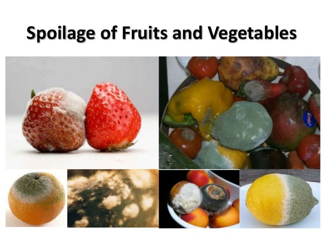 food spoilage Food spoilage a41 define food spoilage food spoilage food becoming unfit for consumption, for example, due to chemical or biological contamination.