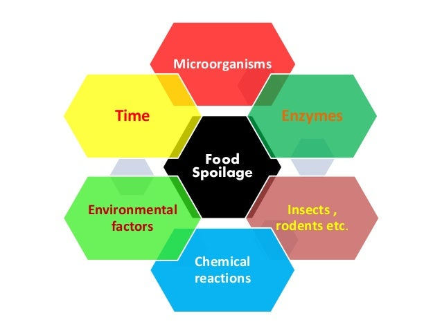 microorganism in the environment