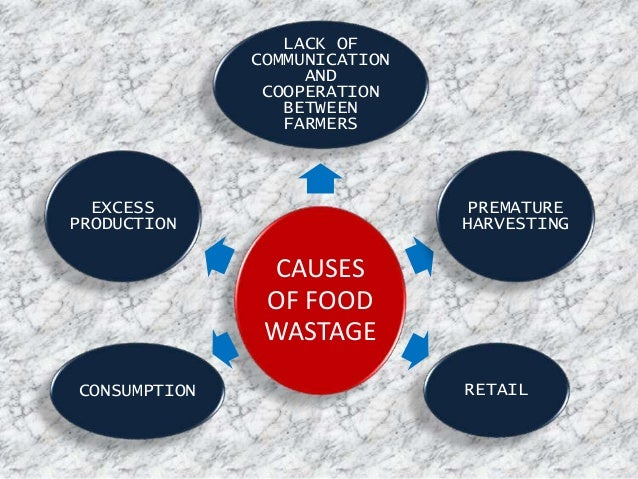 Food Wastage Ppt