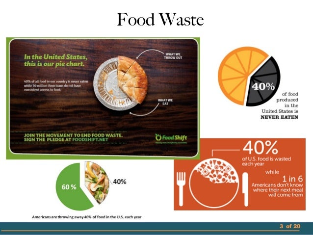 food waste 3 essay Feed the planet's projected 93 billion people,3 reducing food loss and waste satisfies each of the development and environmental criteria we introduced in the first install-ment of the creating a sustainable food future series (table 1.
