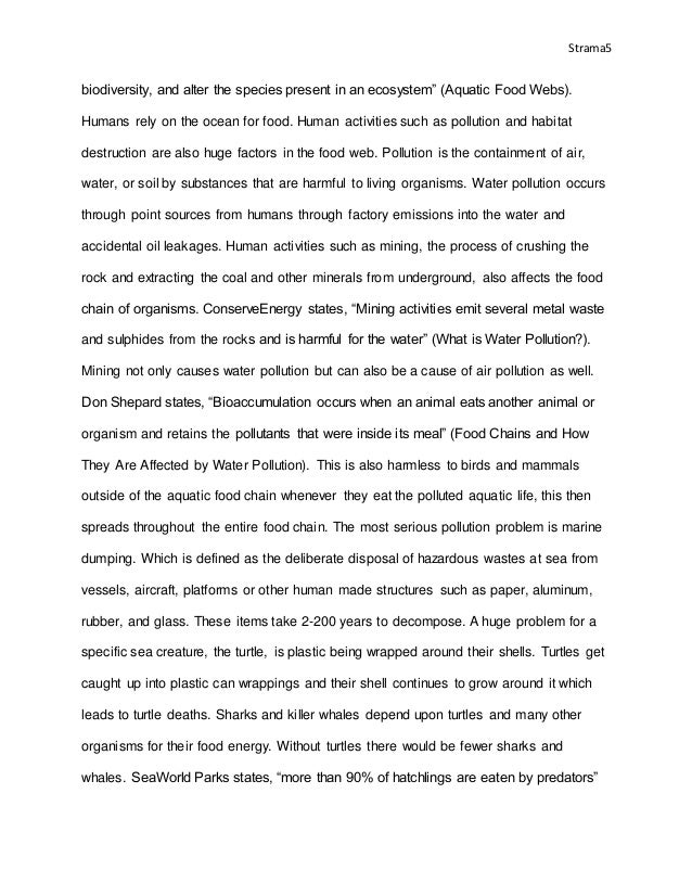 paragraph about my house essay judge's
