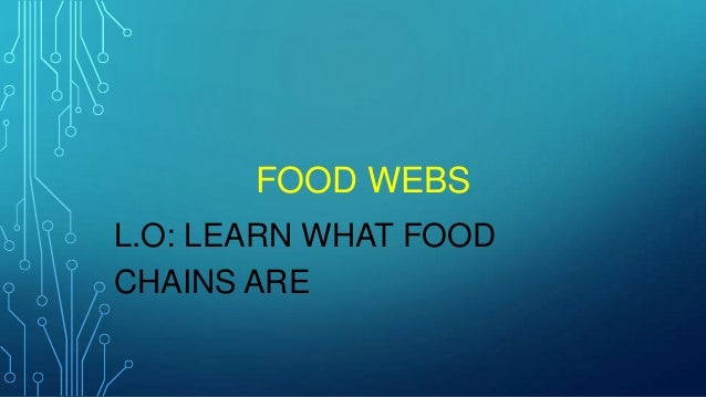 FOOD WEBS L.O: LEARN WHAT FOOD CHAINS ARE