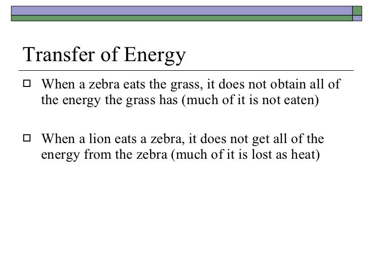 Transfer of Energy <ul><li>When a zebra eats the grass, it does not obtain all of the energy the grass has (much of it is ...