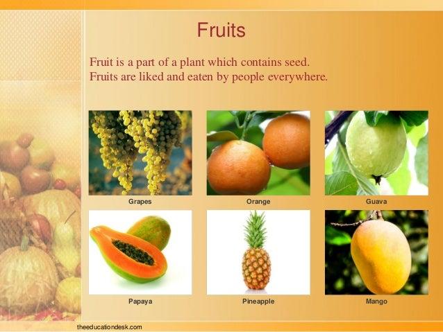 food resources in evs pdf