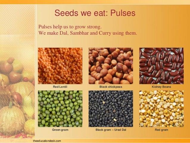 Environmental Science (EVS) : Food We Eat (Class II)