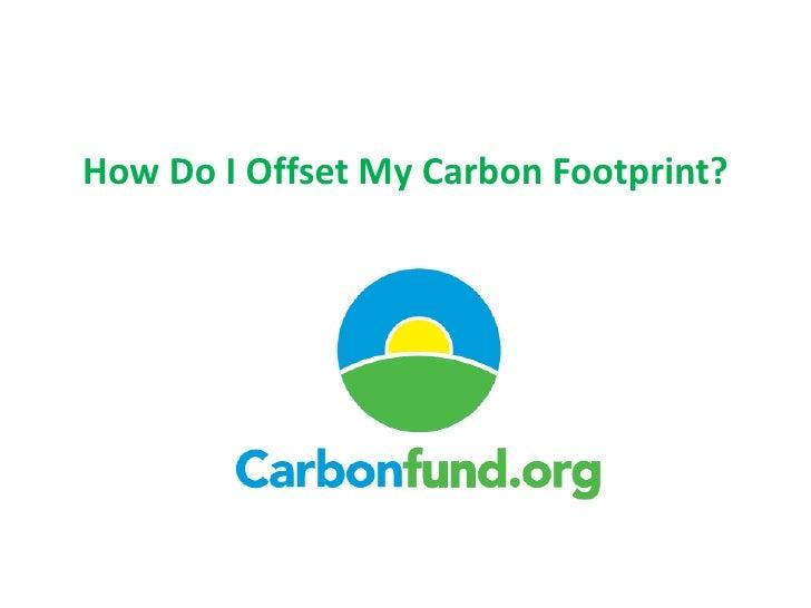 How Do I Offset My Carbon Footprint?<br />