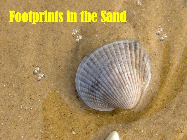 Footprints in the Sand <br />