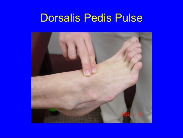 Dorsalis Pedis Pulse Foot surface an...