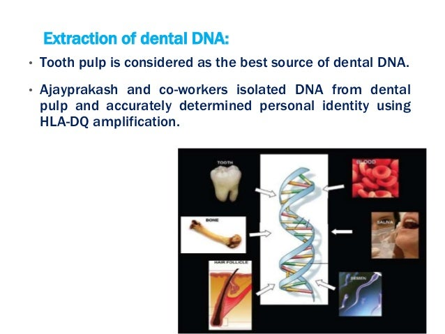 Forensic Odontology Ppt