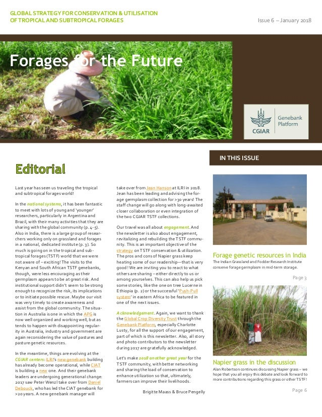 GLOBAL STRATEGY FOR CONSERVATION & UTILISATION OF TROPICAL AND SUBTROPICAL FORAGES Issue 6 – January 2018 Last year has se...
