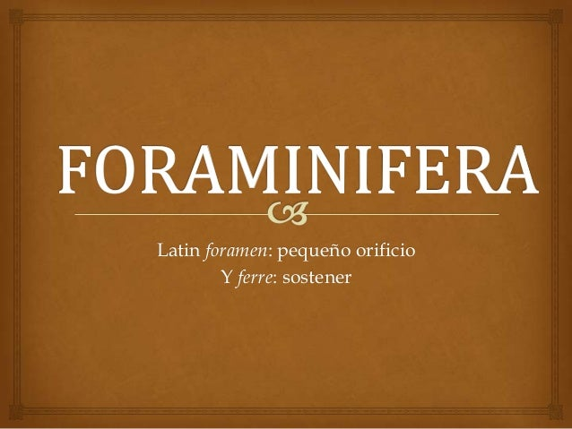 Latin foramen: pequeño orificio Y ferre: sostener