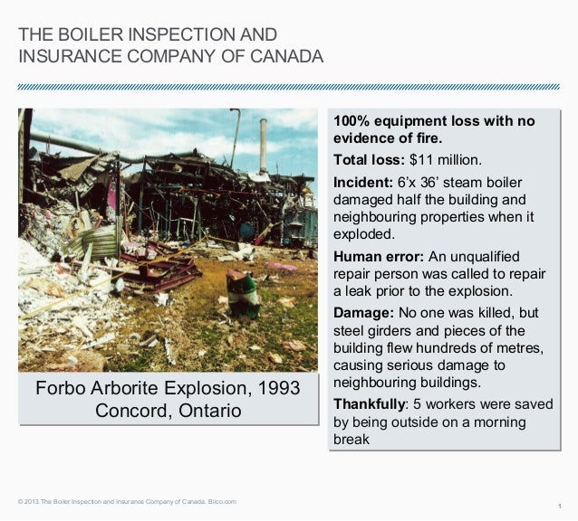 THE BOILER INSPECTION ANDINSURANCE COMPANY OF CANADA                                                                      ...