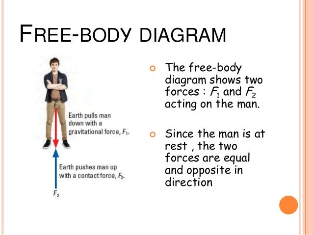 force and free body diagram