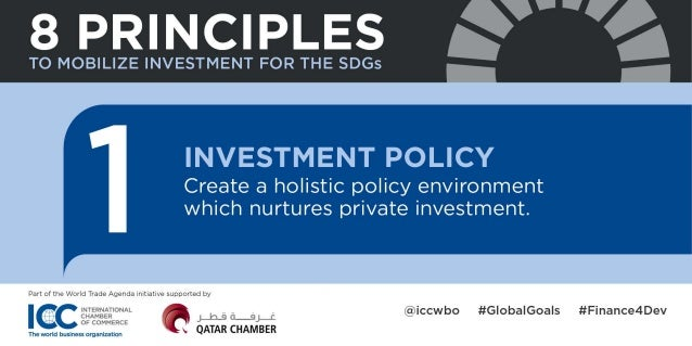 Principles to mobilize investment for the Sustainable Development Goals