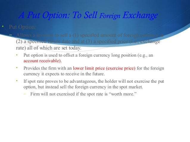 report on foreign currency risks exposure