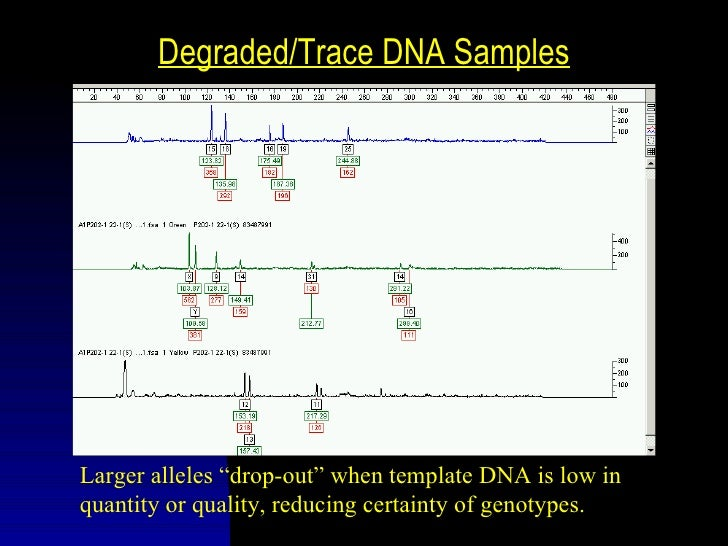 The Combined DNA Index System           (CoDIS)         s   A database of DNA profiles from             violent felons and...