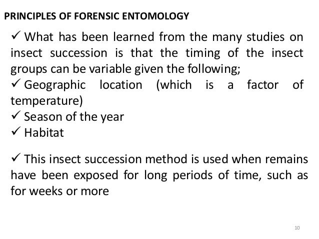 Printables Forensic Entomology Worksheet entomology ppt long tail keywords related animals forensic presentation