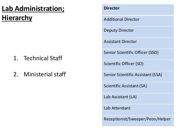 1. Technical Staff 2. Ministerial staff Director Additional Director Deputy Director Assistant Director Senior Scientific ...