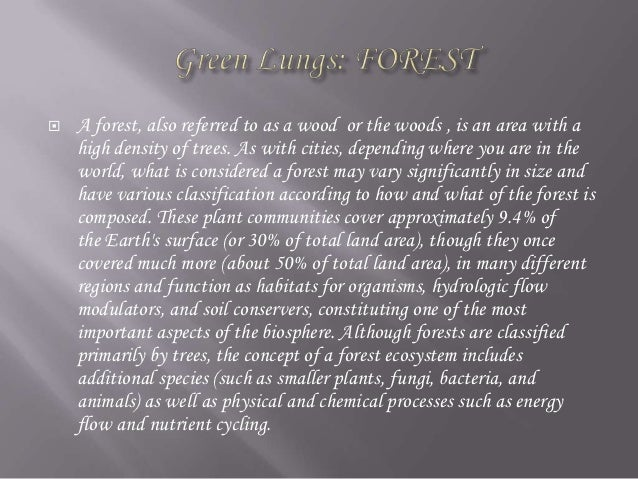 Cause and effect essay about forest fires