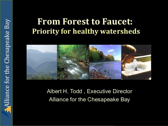 Alliance for the Chesapeake Bay  From Forest to Faucet: Priority for healthy watersheds  Albert H. Todd , Executive Direct...