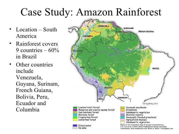 the deforestation of the amazon a case study in understanding ecosystems and their value Case study: human intervention in the amazon widespread deforestation the case study of human intervention in the amazon looks at some of the issues.