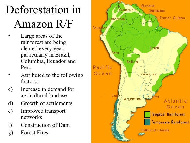 an analysis of the factors that contribute in the devastation of the rainforest An analysis of access into central africa's rainforests an  analysis of access  ing the broad underlying factors that contribute to  environmental harm access  development or road to destruction fao: rome  forman.