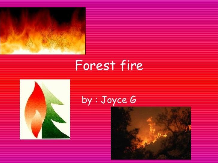 Forest fire by  : Joyce G