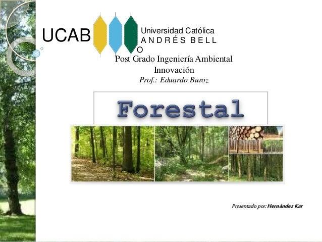 UCAB Universidad Católica A N D R É S B E L L O Post Grado Ingeniería Ambiental Innovación Prof.: Eduardo Buroz Presentado...