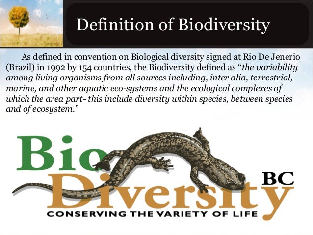 definition of biodiversity This page was last edited on 17 september 2006, at 23:36 this page has been accessed 3,393 times.