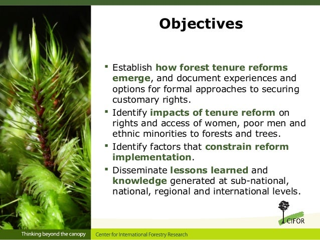 Sustainable Forest Management ~ Impact of forest certification on sustainable
