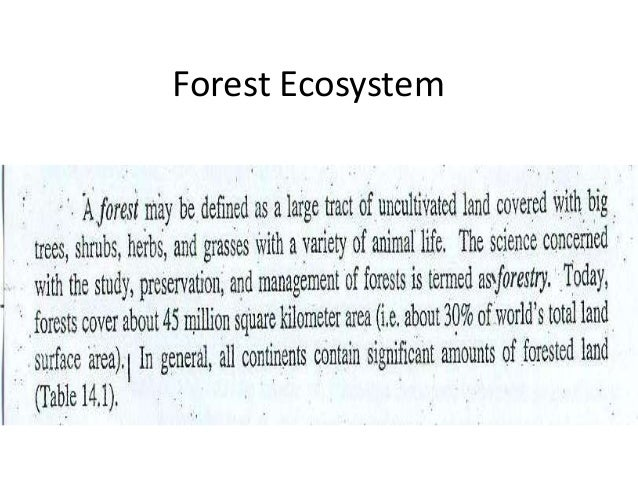 forest ecosystem essay Here is the best resource for homework help with geog 111 : forest ecosystems at university of california, los angeles find geog111 study guides, notes, and.