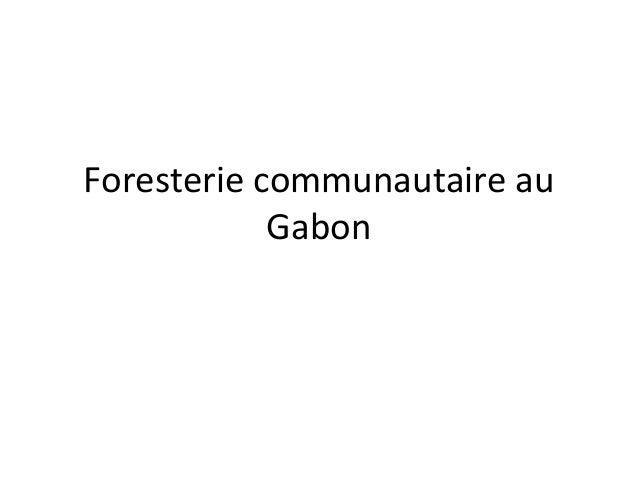 Foresterie communautaire au Gabon