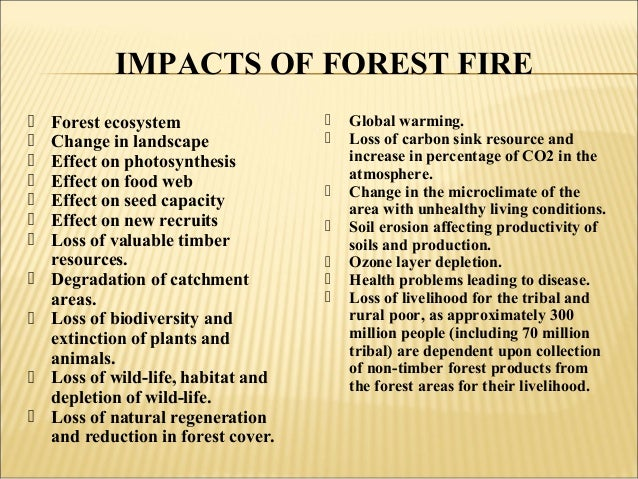 the role of fire in the structuring and organizing of forest vegetation This conference has been organized by the office of the chief scientist at the  ministry of  and practices for effective management of forest fire prevention and  ecological  and their role in land cultivation and fire protection rapidly  but  also for the manipulation of vegetation dynamics and structure.
