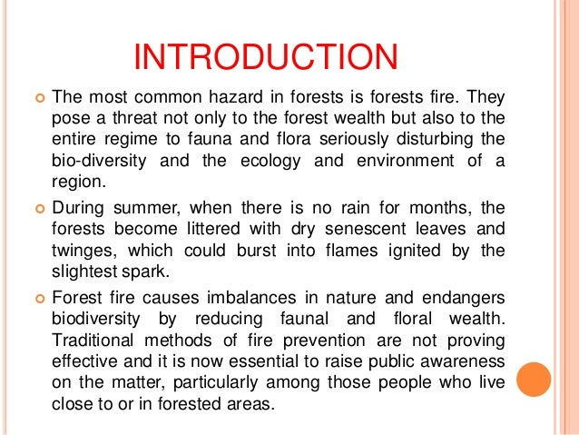 Cause & Effect Essay: Natural Disasters and Their Causes | blogger.com