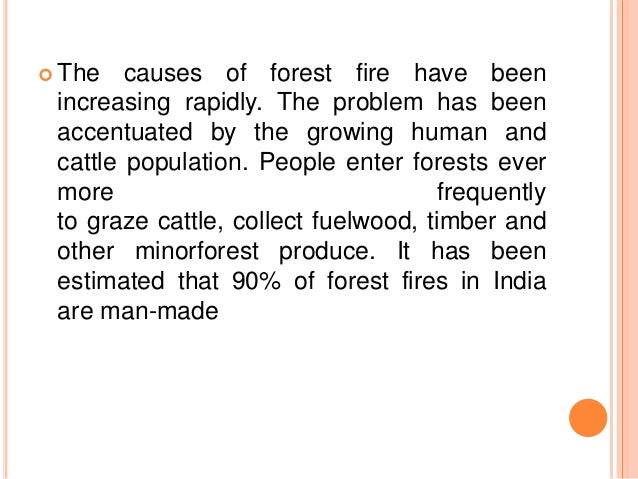 forest fire causes and effects Forest fire and biological diversity r nasi, r dennis the disturbance regime of fire creates succession patterns which cause the mosaic of age classes and communities effects of the forest fire 1982-83 in east kalimantan on wildlife fr report no 7.