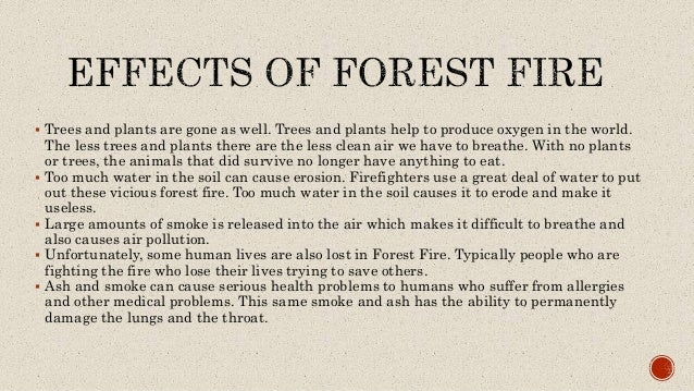 forest fire in india pdf