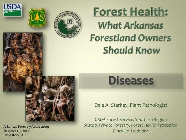 Arkansas Forestry Association October 1-3, 2013 Little Rock, AR Dale A. Starkey, Plant Pathologist USDA Forest Service, So...